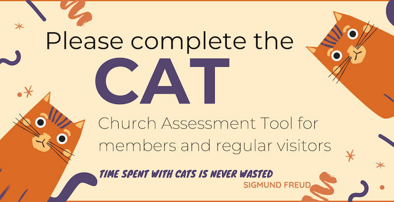 Complete the CAT (Church Assessment Tool)