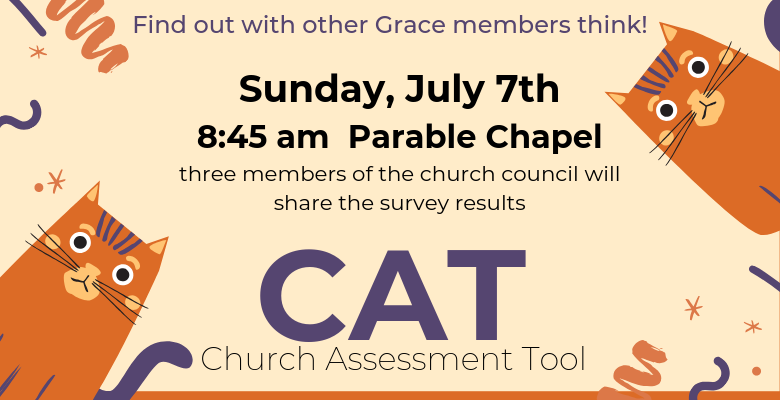 CAT (Church Assessment Tool) Results