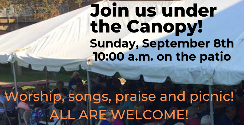 Join us under the canopy