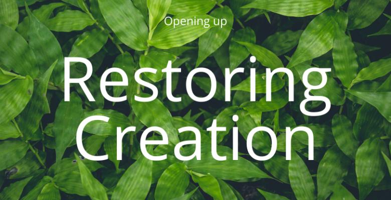 Restoring Creation