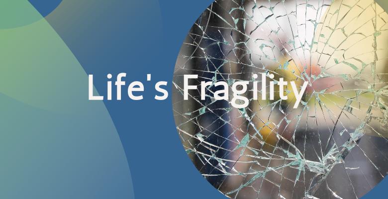 Life's Fragility