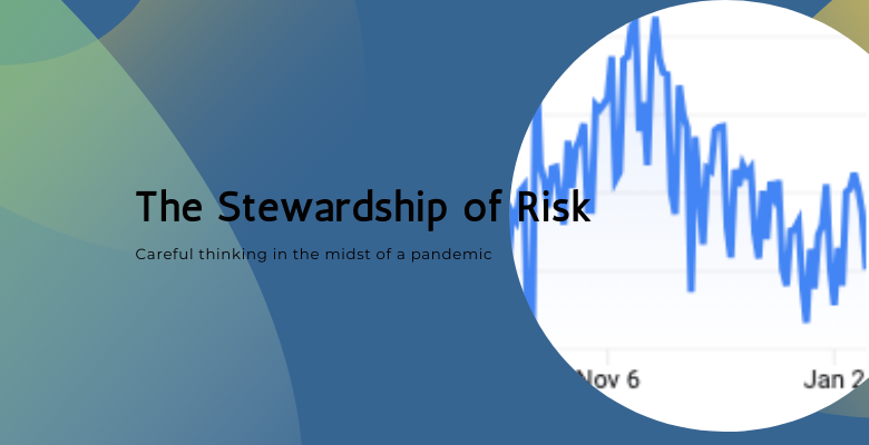 The Stewardship of Risk